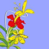 Heldere decoratieve achtergrond met bloemen royalty-vrije illustratie