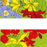 Heldere decoratieve achtergrond met heel wat bloemen royalty-vrije illustratie