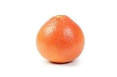 Heldere die grapefruit op witte achtergrond wordt geïsoleerd Stock Fotografie