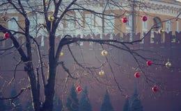 Heldere gekleurde Kerstmisdecoratie op een ontbladerde boom in Mos Stock Foto