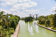 Heldere gele Chinese lantaarns op de straat van Singapore stock afbeeldingen