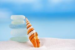 Heldere gestripte overzeese shell met overzees glas oceaanstrand en zeegezicht Royalty-vrije Stock Foto's