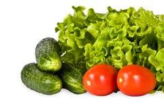 Heldere groenten, salade, tomaat, komkommer Stock Foto's