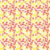 Heldere heerlijke smakelijke yummy gesneden de zomer tropische veelkleurige citrusvruchten en geheel citroenen en grapefruitpatro Stock Fotografie