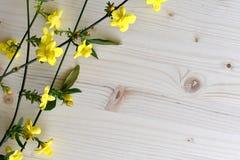 Heldere houten die achtergrond met gele bloemen en groene takjes wordt verfraaid royalty-vrije stock fotografie