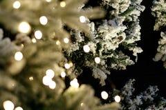 Heldere Kerstmisachtergrond Stock Foto's