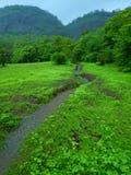 Heldere kleuren van Indiër moesson-Iii royalty-vrije stock fotografie