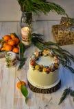 Heldere kleurrijke Cristmas-cake met groene en roze die punten met bessen worden verfraaid op wit worden geïsoleerd Eigengemaakte royalty-vrije stock foto's