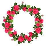 Heldere kroon van rode die rozen op witte achtergrond worden geïsoleerd royalty-vrije illustratie