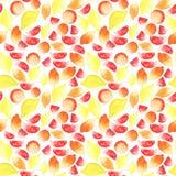 Heldere mooie smakelijke yummy gesneden de zomer tropische citrusvruchten en gehele citroenen en grapefruitwaterverf Stock Foto