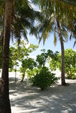Heldere Ochtend Mening over de Eilanden van de Maldiven van vliegtuig Stock Foto's