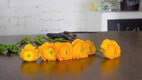 Heldere oranje bloemen op donkere houten lijst Stock Foto's