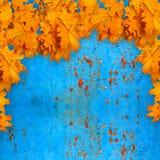 Heldere oranje de herfstbladeren op de achtergrond van roestig metaal Royalty-vrije Stock Afbeeldingen