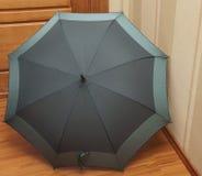 Heldere Paraplu Stock Afbeelding