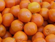 Heldere pittige sinaasappelen Royalty-vrije Stock Foto's