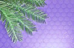 Heldere Purpere Geweven Achtergrond met de Groene Tak van Glittery royalty-vrije stock foto's