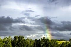 Heldere regenboog in de hemel met donkere wolken op de achtergrond van bomen Stock Foto's
