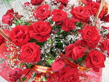 Heldere rood nam bloemen met bandensamenstelling toe Stock Foto