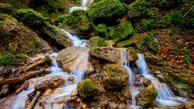 Heldere sappige waterval in het de herfstbos royalty-vrije stock afbeeldingen