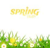 Heldere vectorillustratie Gras en bloemenachtergrond De lenteontwerp Royalty-vrije Stock Foto