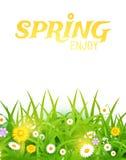 Heldere vectorillustratie Gras en bloemenachtergrond De lenteontwerp Stock Foto