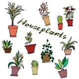 Heldere vectorreeks huisinstallaties in potten met een inschrijving Royalty-vrije Illustratie