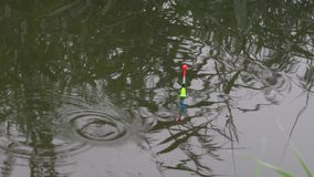 Heldere vlotter die op de rivier met een beet van vissen drijven stock videobeelden