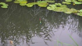 Heldere vlotter die op de rivier met een beet van vissen drijven stock footage