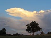 Heldere wolk Royalty-vrije Stock Fotografie