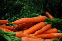 Heldere wortelen bij marktkraam Stock Foto