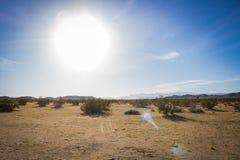 Heldere Zon in Woestijn royalty-vrije stock foto