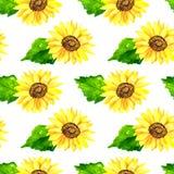 Heldere zonnebloem met groene bladeren Naadloos patroon Hand getrokken waterverfillustratie r vector illustratie