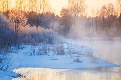 Heldere zonnestralen die door de winterbos stromen royalty-vrije stock foto's