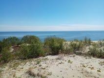 Heldere zonnige dag Het Spit van Curonian Rusland stock fotografie