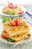 Heldere zonnige rustieke pastei met gekookte kwark stock foto