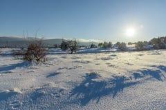 Heldere zonnige zonsondergang op sneeuwgebied Rusland, Stary Krym Royalty-vrije Stock Fotografie