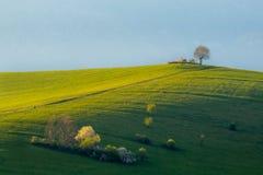 Heldergroen graslandschap in de lente met landweg Royalty-vrije Stock Foto