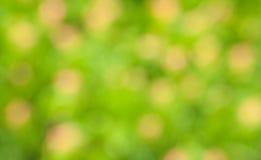 Heldergroene bluring achtergrond Stock Afbeeldingen