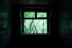 Heldergroene mening door het venster van de donkere ruimte stock fotografie