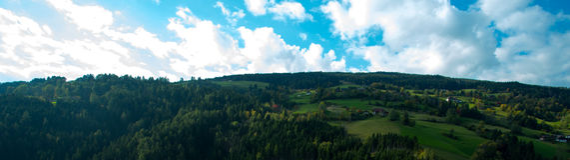 Heldergroene weiden en blauwe hemel stock fotografie