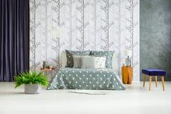 Helecho en dormitorio espacioso Imagen de archivo