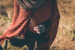 Helecho seco Imagen de archivo libre de regalías