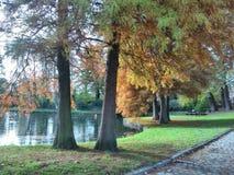Helecine,比利时国家公园  免版税库存照片