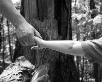 Helfende Hände Stockfoto