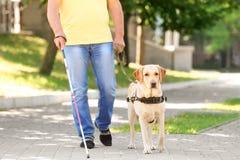 Helfender Blinder des Blindenhunds Lizenzfreie Stockfotos