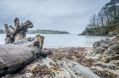 Helford passage in cornwall england uk Royalty Free Stock Photography