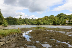 Helford river, Cornwall Royalty Free Stock Photography