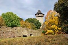 Helfstyn castle Royalty Free Stock Photo