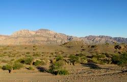 Helft-woestijn berglandschap stock afbeelding