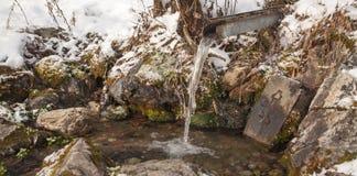Helgedomen fjädrar för ligganderussia för 33c januari ural vinter temperatur Arkivbilder